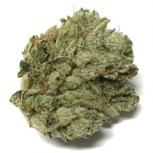 buy gorilla glue #4