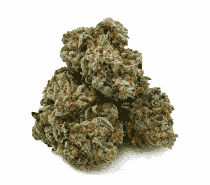 Buy Key Lime Pie Strain. buy weed online usa. buy real weed online. buy marijuana online. legit online dispensary shipping worldwide.